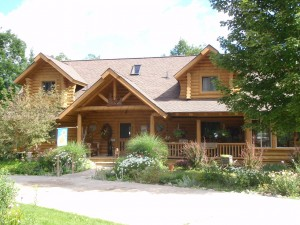 Loge home Bed and breakfast in Wolverine - image