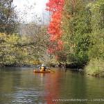 fall kayaking - image