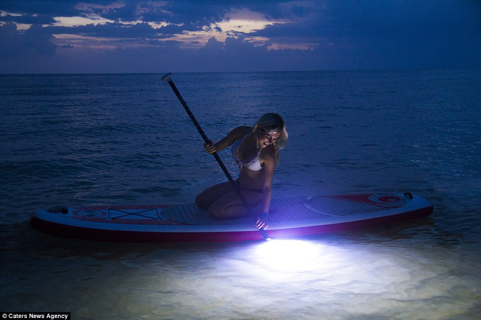 lighted sup tours - image
