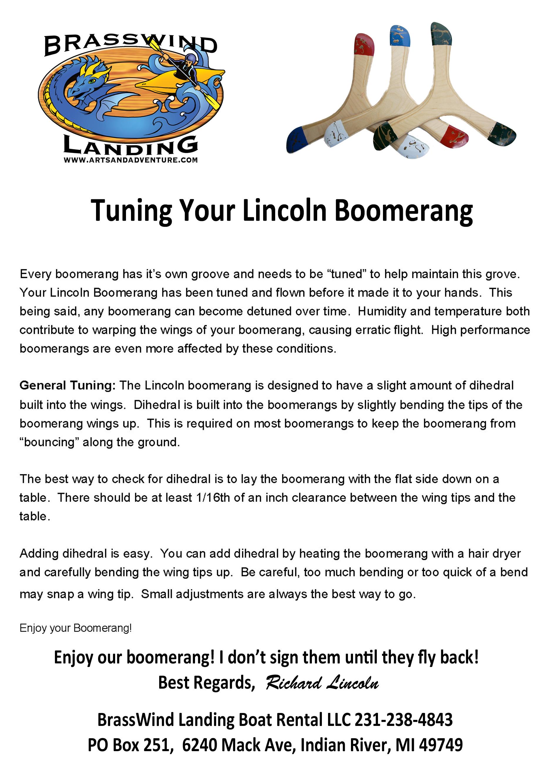 tuning boomerang flyer - image